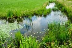 Journée mondiale des zones humides 2018